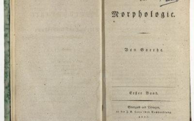 Zur Morphologie von Goethe, Stuttgart und Tübingen