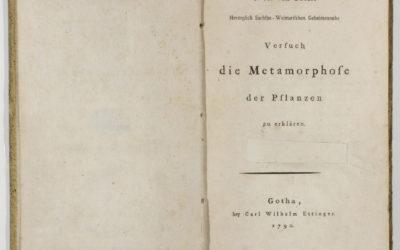 J. W. von Goethe Versuch der Metamorphose der Pflanzen zu erklären
